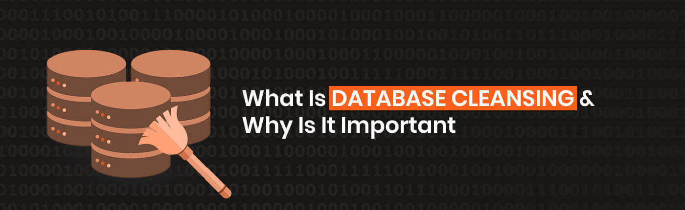 What Is Database Cleansing and Why Is It Important?